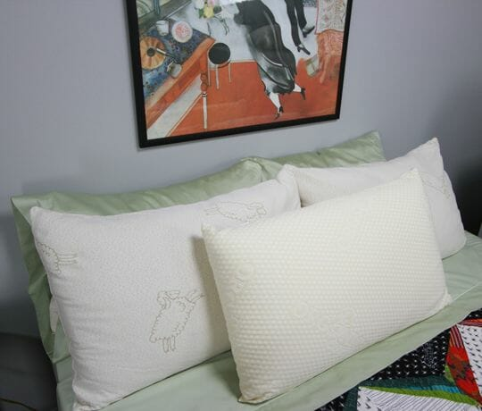 Natural Talalay Latex Pillows