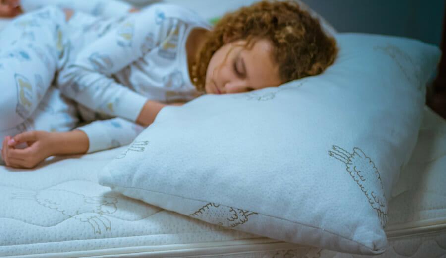 Natural Talalay Latex Pillows - Shredded